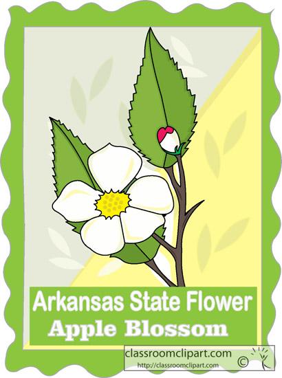 arkansas_state_flower_apple_blossom.jpg