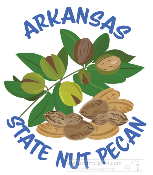 pecan-state-nut-of-arkansas-clipart.jpg