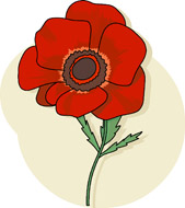 Search Results - Search Results for poppy flower Pictures ...