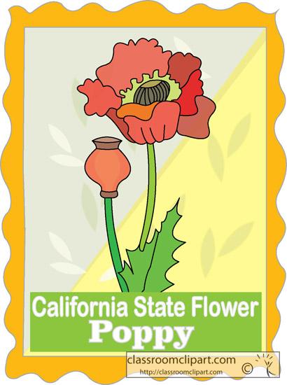 california_state_flower_poppy.jpg