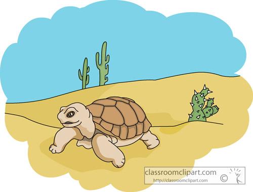 desert_tortoise_812.jpg