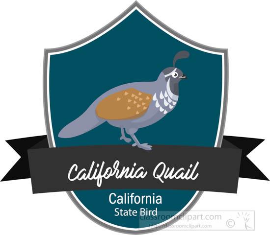 state-bird-of-california-the-california-quail-clipart.jpg