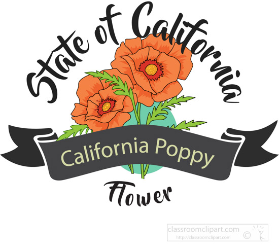 state-flower-of-california-poppy-clipart-image-61256.jpg