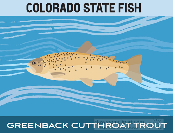colorado-state-fish-greenback-cutthroat-rout-clipart-image.jpg