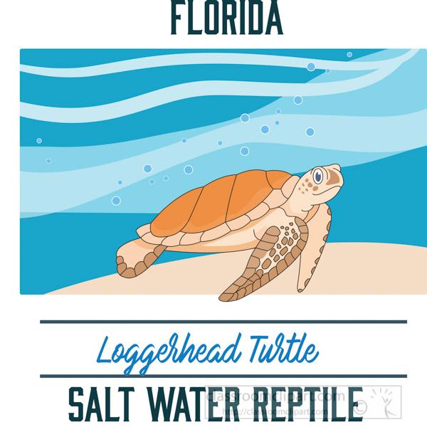 florida-state-saltwater-reptile-loggerhead-turtle-vector-clipart-image-2.jpg