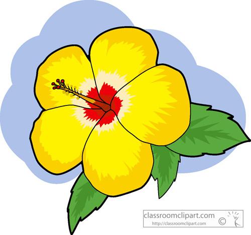 yellow_hibiscus.jpg