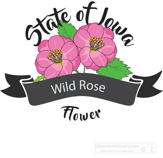 state-flower-of-iowa-wild-rose-clipart-image-612568.jpg