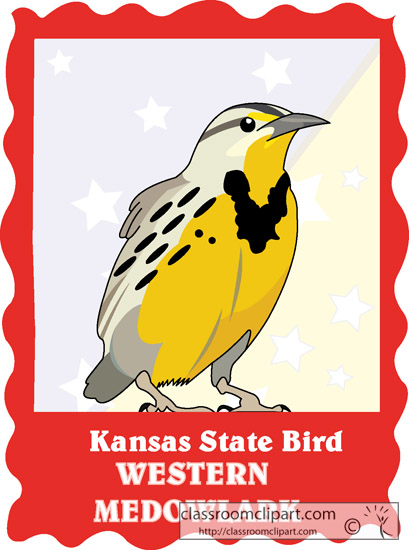 kansas_state_bird_western_meadowlark.jpg