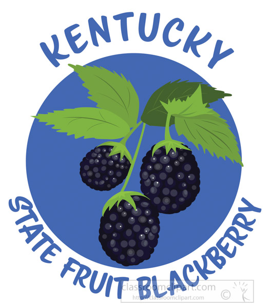 blackberry-state-fruit-kentucky-clipart.jpg