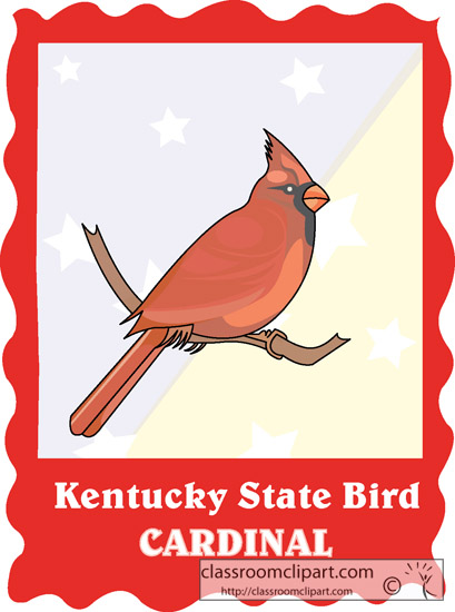 kentucky_state_bird_cardinal.jpg