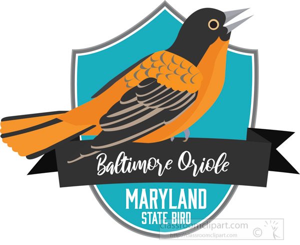 state-bird-of-maryland-baltimore-oriole-vector-clipart.jpg