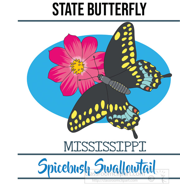 mississippi-state-butterfly-spicebush-swallowtail-vector-clipart-image.jpg