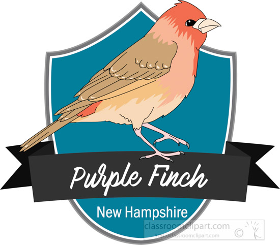 state-bird-of-new-hampshire-the-purple-finch-clipart.jpg