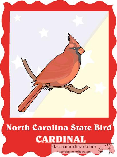 north_carolina_state_bird_cardinal.jpg