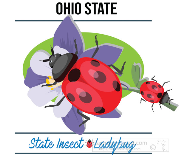 ohio-state-insect-ladybug-vector-clipart-image-2.jpg
