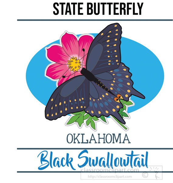 oklahoma-state-butterfly-black-swallowtail-vector-clipart-image.jpg