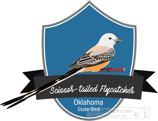 state-bird-of-oklahoma-the-scissor-tailed-flycatcher-clipart.jpg