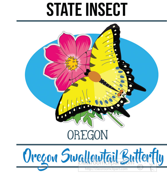 oregon-state-insect-oregon-swallowtail-butterfly-vector-clipart-image.jpg