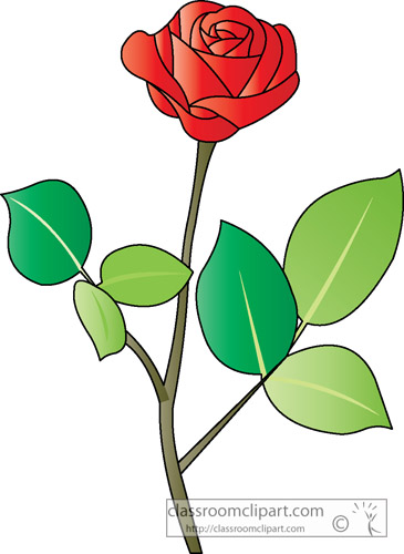 clipart english rose - photo #31