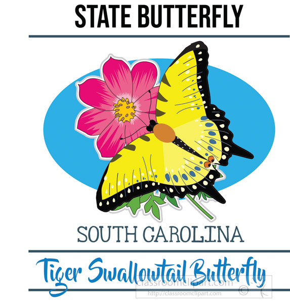south-carolina-state-butterfly-tiger-swallowtail-butterfly-vector-clipart-image.jpg