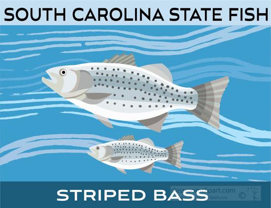 south-carolina-state-fish-striped-bass-clipart-image.jpg