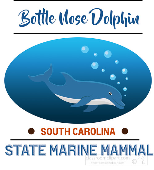 south-carolina-state-marine-mammal-bottle-nose-dolphin-clipart-image.jpg