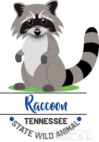 tennessee-state-wild-animal-raccoon-clipart-animal.jpg