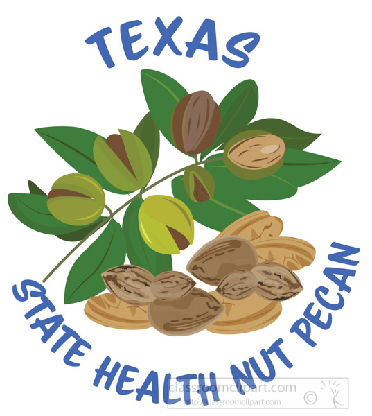pecan-state-health-nut-of-texas-clipart.jpg