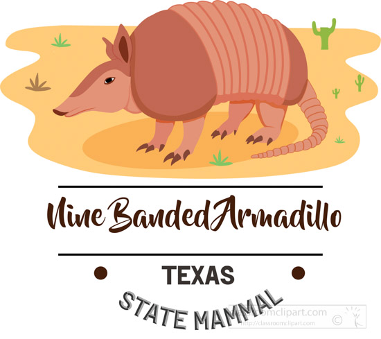 texas-state-mammal-nine-banded-armadillo-clipart-animal.jpg