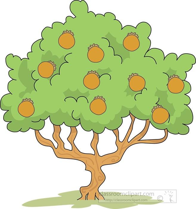 chikoo-or-sapotta-tree-clipart.jpg