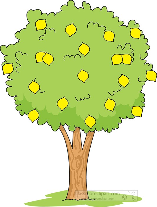 lemon-tree-clipart.jpg