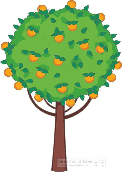 Trees : orange-tree-with-full-of-fruits-clipart ...