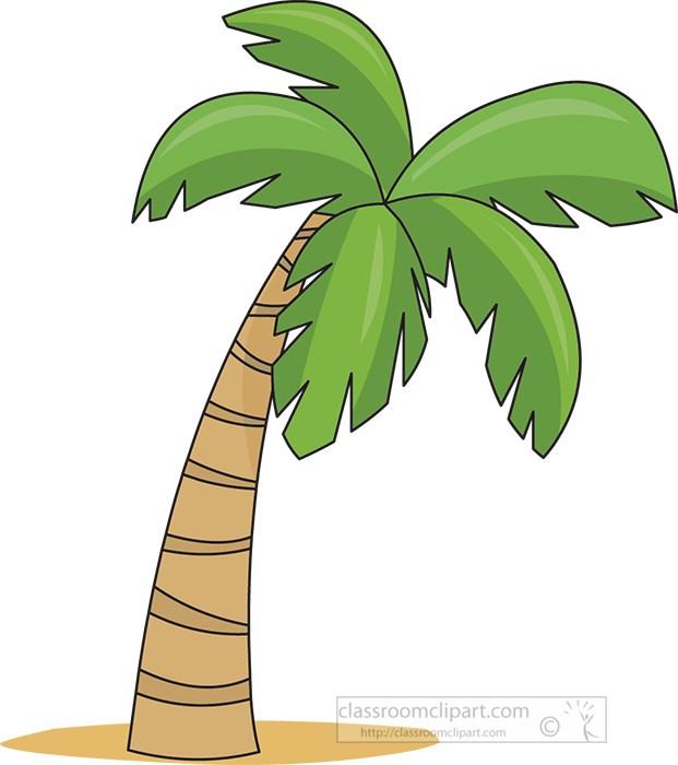 palm-tree-clipart-08.jpg