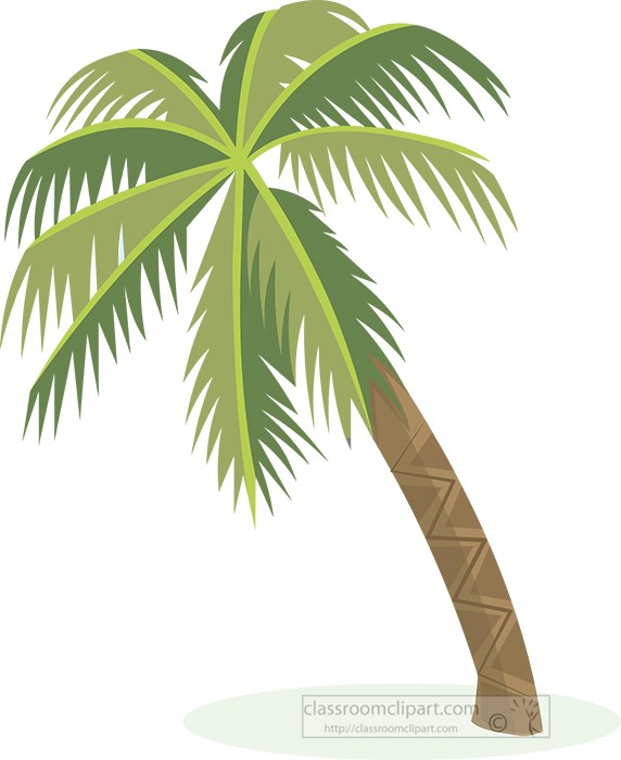 single-palm-tree-clipart-2021a.jpg
