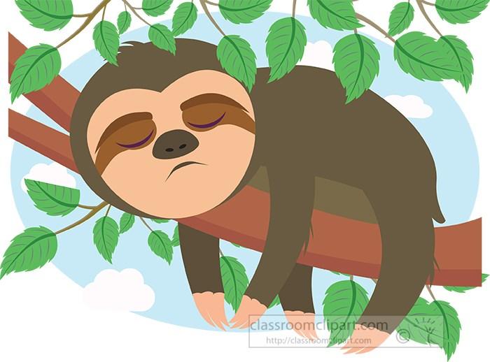 sloth-sleeping-on-tree-branch-clipart.jpg