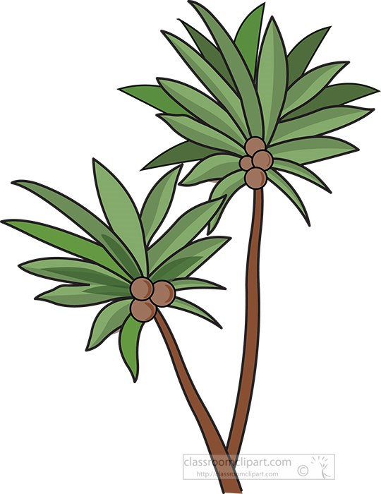 two-coconut-trees-clipart.jpg