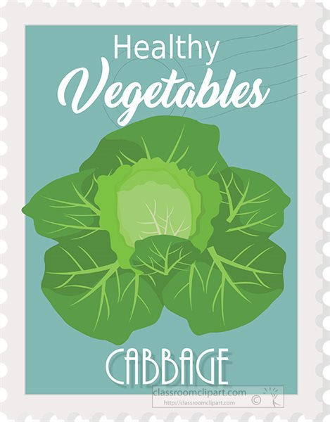cabbage-healthy-vegetable-stamp-style-clipart.jpg