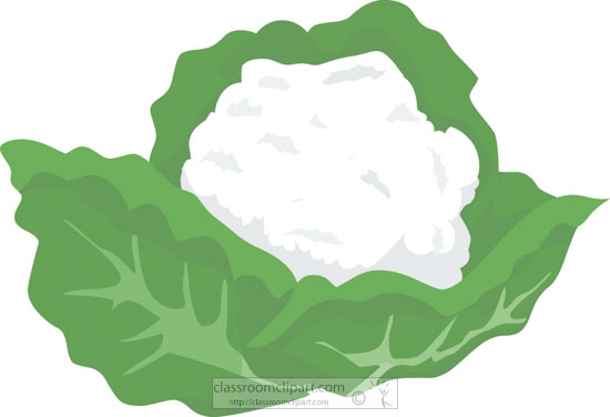 clipart-of-vegetable-cauliflower-1211.jpg