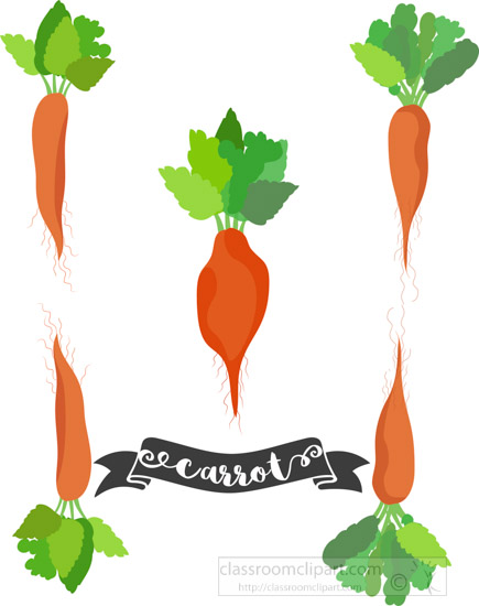 three-different-types-of-carrots-including-ribbon-with-text-clipart.jpg