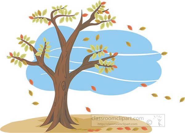 autum-tree-with-leaves-blowing-in-wind.jpg