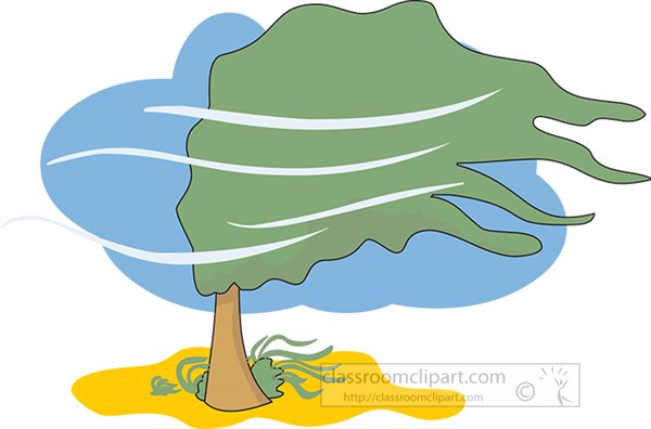 weather-tree-blowing-in-wind-clipart.jpg