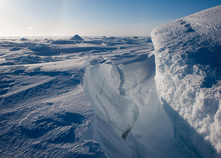 arctic-sheet-of-ice-known-as-an-ice-floe-002-photo.jpg