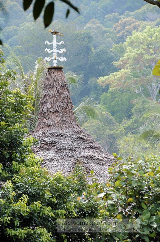 Borneo_1270a.jpg