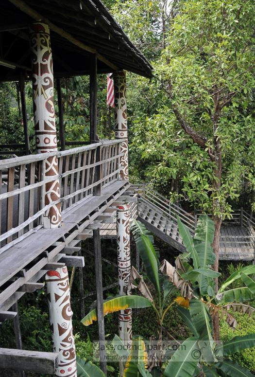 Borneo_1311a.jpg