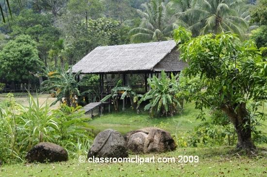 Borneo_1421a.jpg