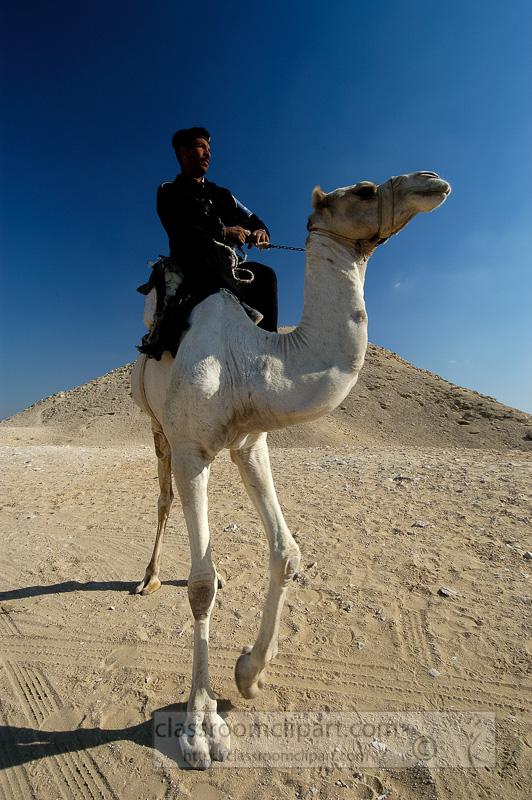 egyptain-guard-sitting-on-camel-photo-image-1135a.jpg