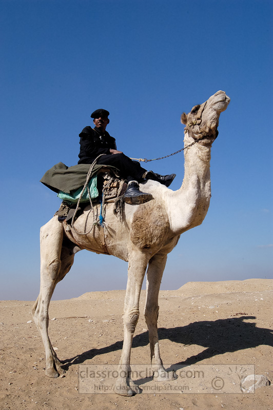 egyptain-guard-sitting-on-camel-photo-image-1206a.jpg