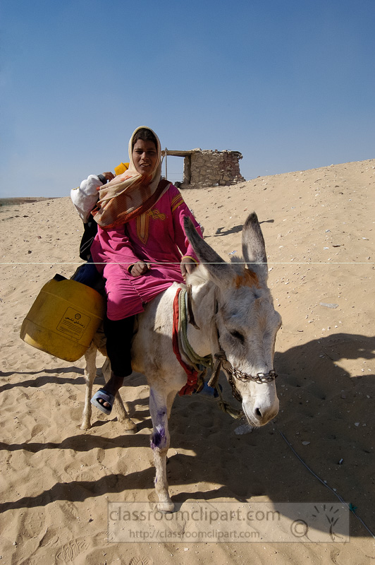 egyptian-girl-sitting-on-donkey-photo-image-1357a.jpg