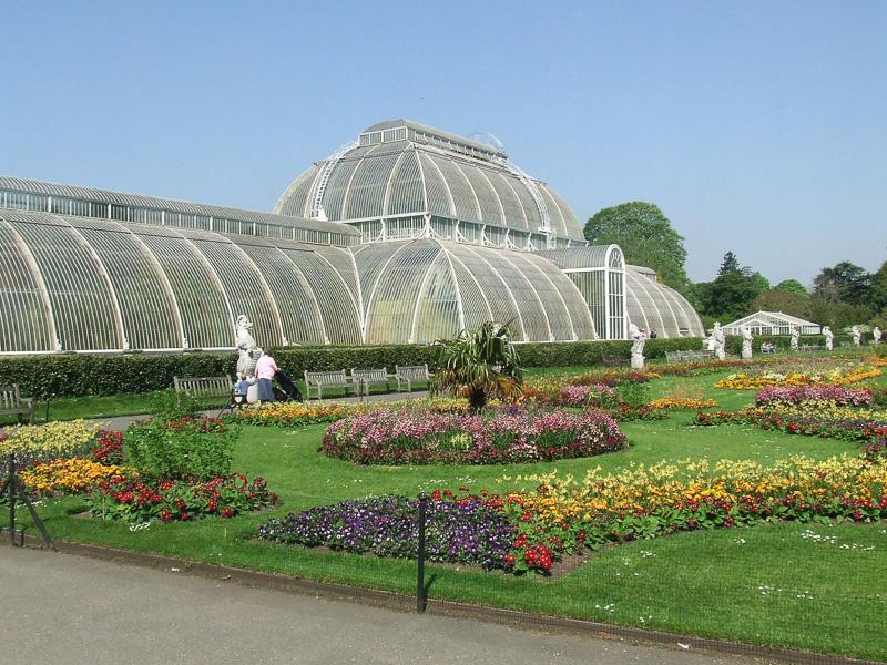 Palm-House-at-the-Royal-Botanic-Gardens-in-Kew-England.jpg