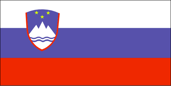 si-lgflag.jpg